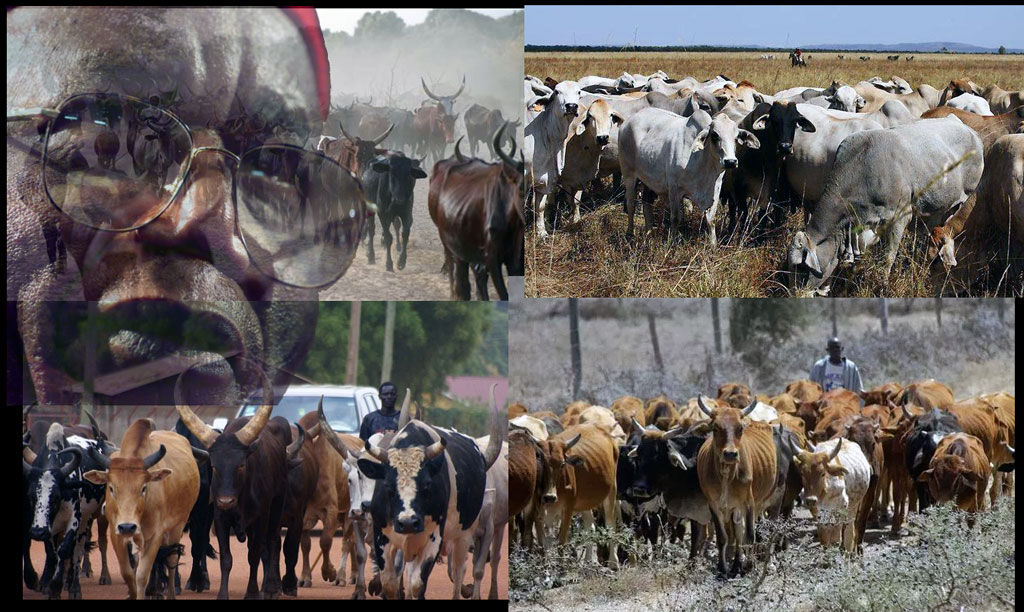 Study says Ban open grazing.