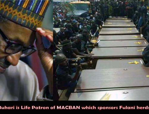 Benue Killings by Fulani Militia Were Retaliation For Stolen Cattle – Says Garus Gololo of MACBAN