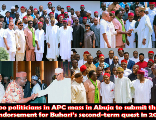 Igbo Politicians in APC Promise Buhari Southeast Votes for His 2nd-Term Bid in 2019 Elections