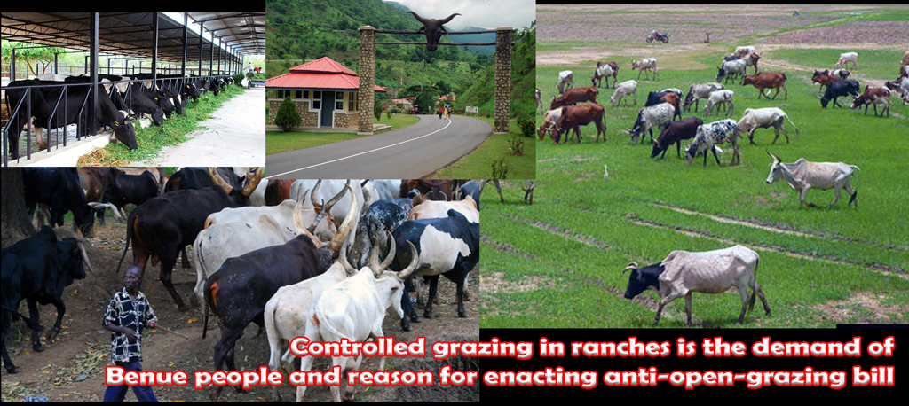Ranching trumps open grazing
