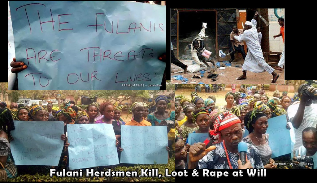 Say no to murder, rape and looting