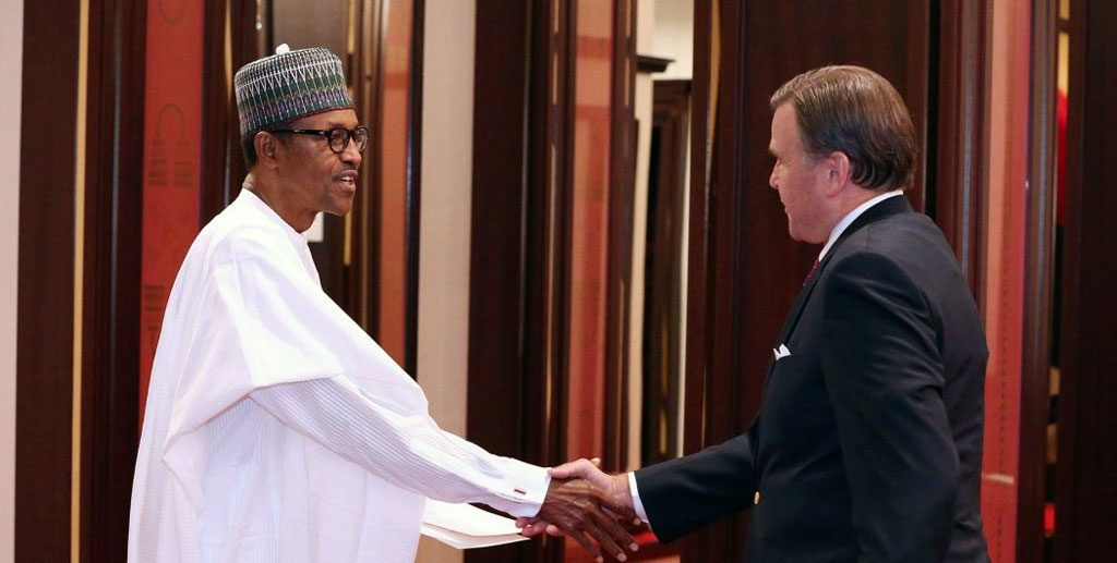 US take on Nigeria is dubious