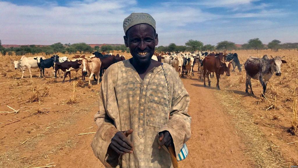 Jihadi warrior as herdsman