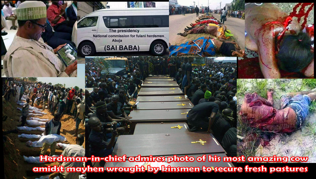 Buhari is Chief herdsman