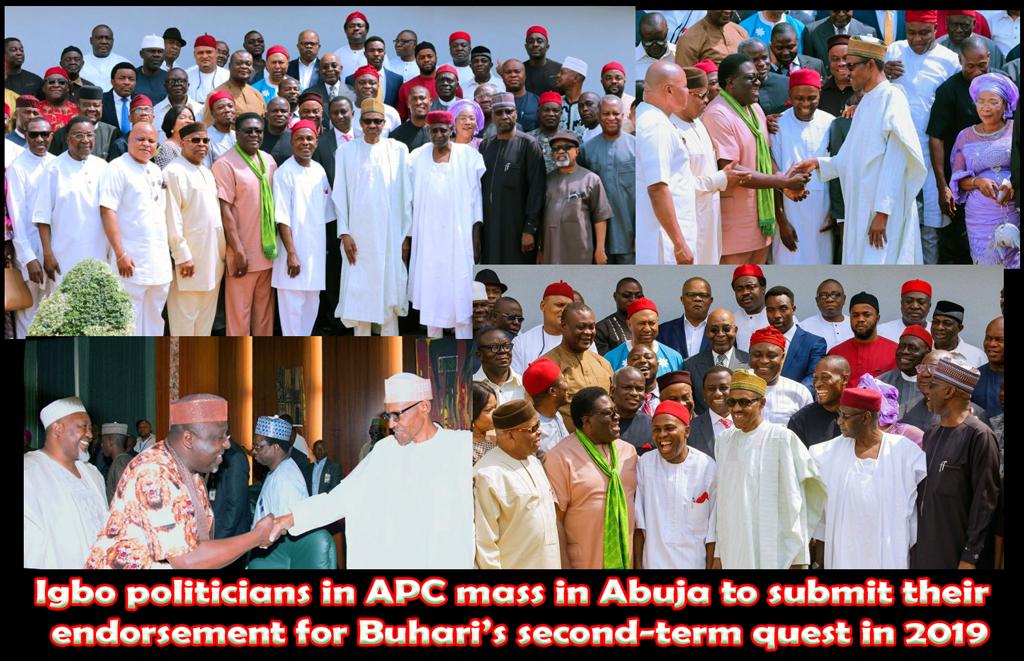 Igbo politicians endorse Buhari
