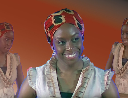 When We Reject the Single Story, We Regain A Sort of Paradise Lost – Ngozi Chimamanda Adichie