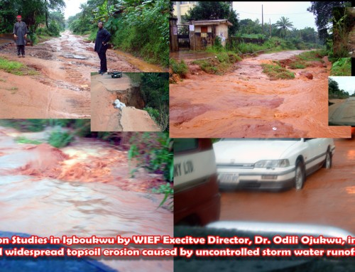 Ruining Our Stewardship of God's Earth Through Creation of Soil Erosion Is Immoral – Prof. Nwosu