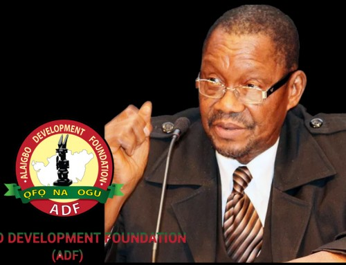 Meaningful Restructuring of Today's Unitary Nigeria Means More Than Mere Constitutional Amendment – Says Nwala of ADF