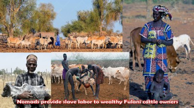 Nomadic slave labor for MACBAN