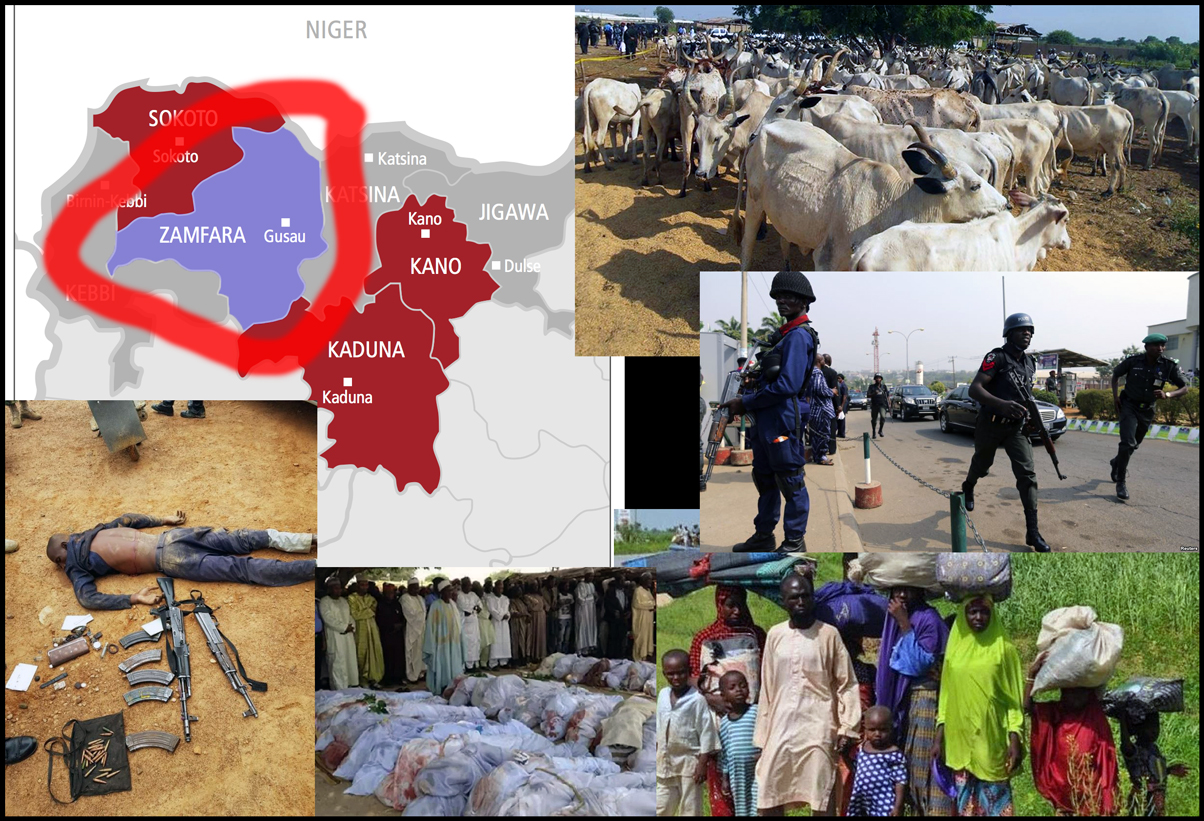 Zamfara in lawless state