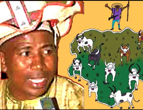 Abuja or Lagos Are Useless to a Fulani Unless These Cities Are Converted into Grazing Fields for Their Cows – Miyetti Allah Leader, Bodejo.