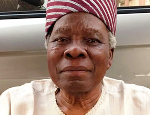 The President of Nigeria, Under the 1999 Constitution, Is the Most Powerful Politician on Earth – Says Yoruba Leader, Banji Akintoye