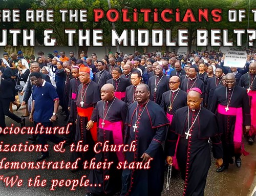 It's Our Last Chance: Mass Boycott of the 2023 General Elections Is More Powerful Than AK47s – Rev. Fr. Nwosuh