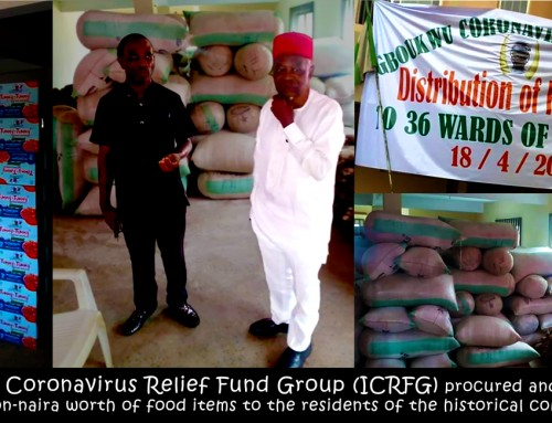Institutionalize the ICRFG as a Trust Fund With Requisite Buys-in by the IDU & Igboukwu Traditional Institution – MCK Ubah