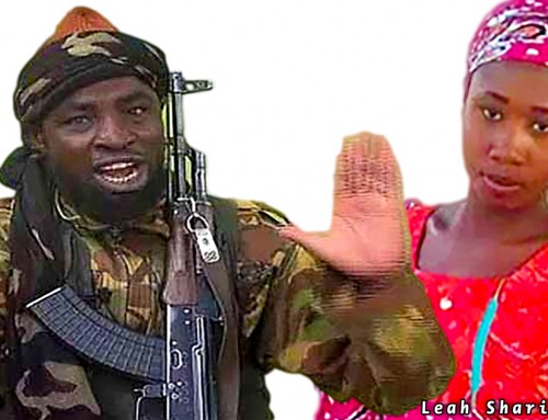 Boko Haram Terrorists Are Killing Christians in Yobe State Because They Wish to Islamize the Entire Country – Terror Survivor
