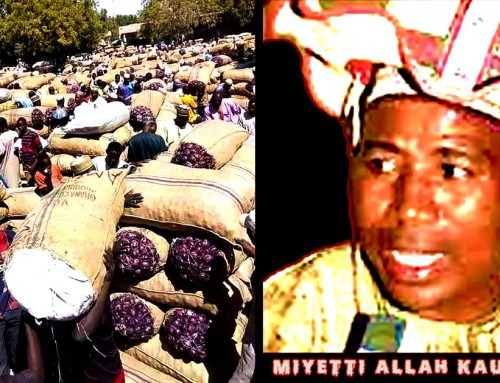 The Myth of Absolute Dependence of the South on Northern Nigeria for Food Supply Is Shattered for Good