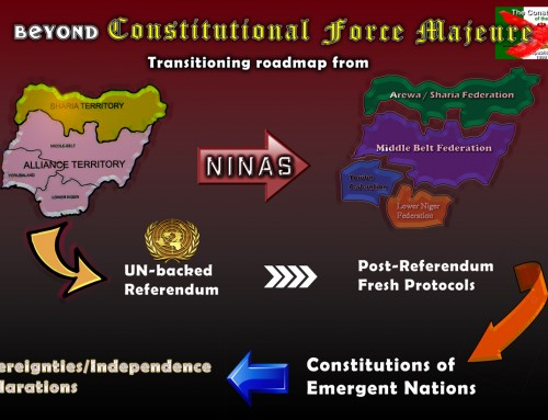 NINAS Vows to Dismantle the Imposed Fraudulent 1999 Constitution, Derive Regional Constitutions & Terminate Unitary Nigeria – Press Briefing