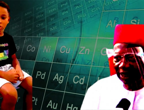 No Country Can Make Meaningful Progress in the Modern World Without Universal Understanding of Some Basic Science – Prof. Uchenna Nwosu