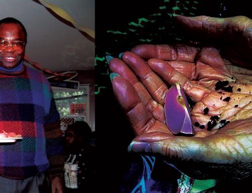 Anatomy of Kolanut: The Highest-valued Kolanut is the Cream-colored IKENGA Known as EZE OJI. – Prof. Nwosu